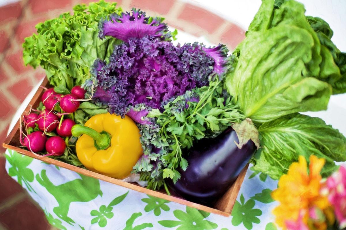 Concurso centros de frutas y hortalizas